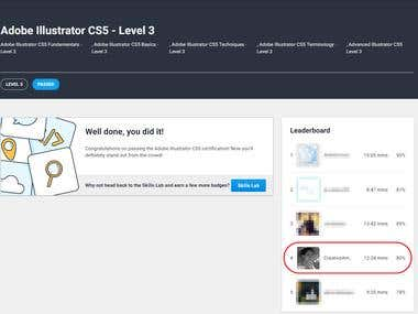 Top tested Adobe Illustrator expert on Freelancer!