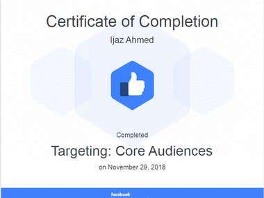 Facebook Targetting: Core Audience Certificate
