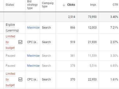 Successful Adwords Campaign