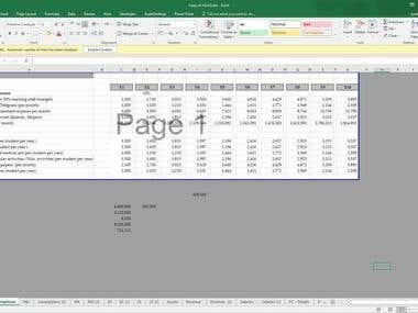 Business Plan with Financial Projections and Financial Plans