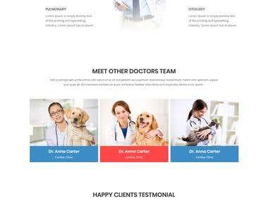 its medical project
