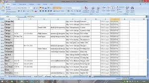 Data Entry and Web Search Project