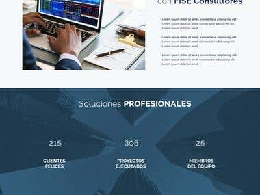 Website design for consulting services company