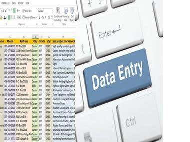 Data entry is a very easy job for me. A few days ago I finis