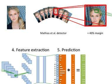 Determination of age by deep learning