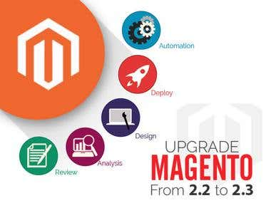 Magento Support Project - The update to Magento 2.3