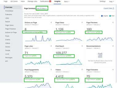 Facebook Page - 28 days overview