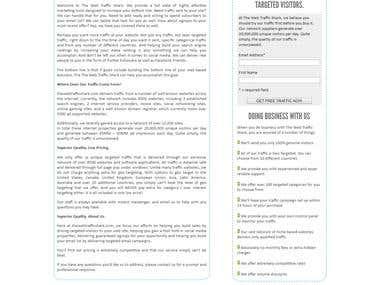 eCommerce website Web Traffic Shark