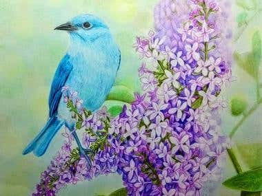 Azulejo bird