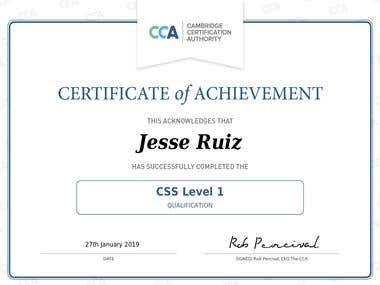 CSS Level 1 Certification