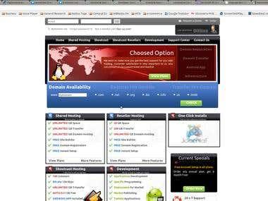 Serveion Web Site