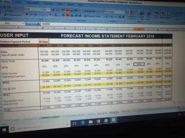 Financial Projection & Forecasting.