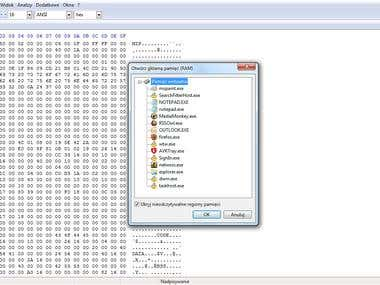 Binary/Hex code editor.