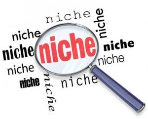 On-Page SEO for a niche website