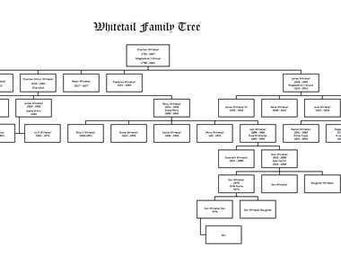 Family Tree on A3