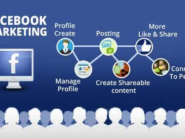Facebook Markting Expert