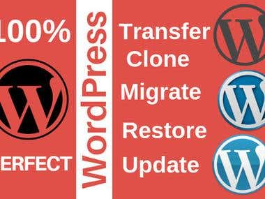 New Wordpress Instalation and Migration