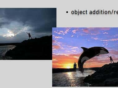 object addition/removal