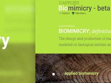 Applied Biomimicry