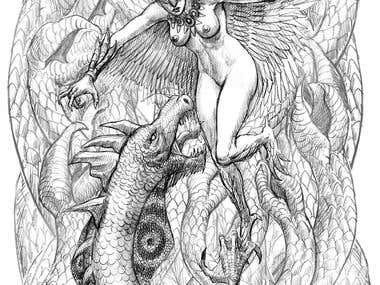 The Harpy and the Flying Dragon