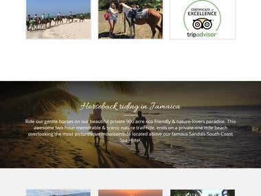 Website for Travels