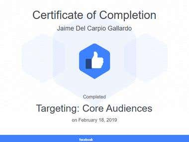 Targeting: Core Audiences
