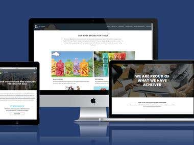Synergy Website Design