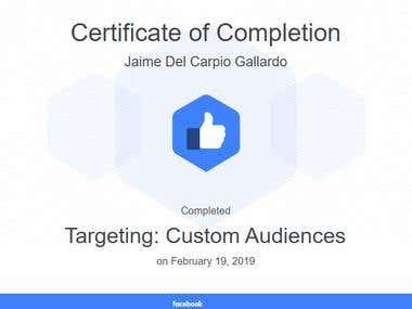 Targeting: Custom Audiences