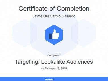 Targeting: Lookalike Audiences
