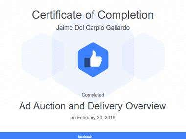 Ad Auction and Delivery Overview