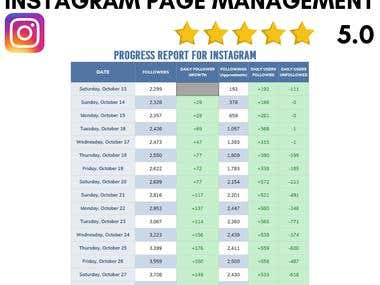 Instagram Page Management