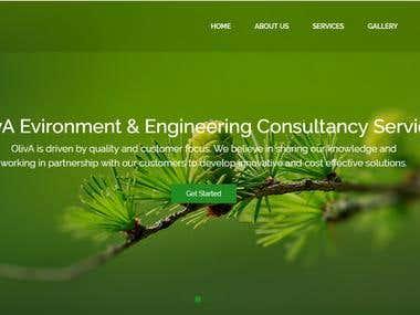 Wordpress website project work