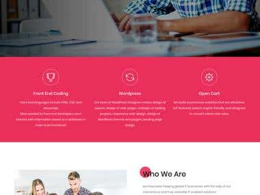 High Defination new look website design with Back-end