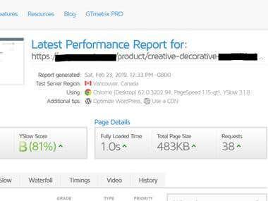 Wordpress Speed Optimization for Ecommerce Website.
