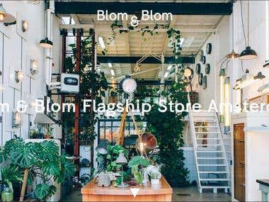 Blom & Blom Lighting Website