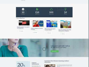 Visa Hub Website Design