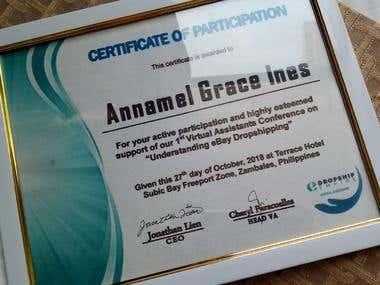 eBay Training Certificate