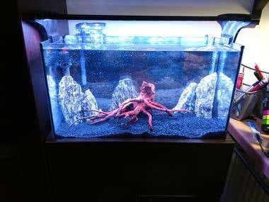 Arduino Controlled Smart Aquarium