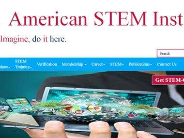 American Stem Institute