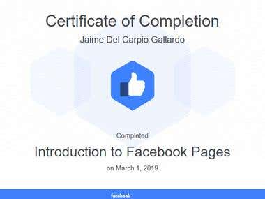 Introduction to Facebook Pages
