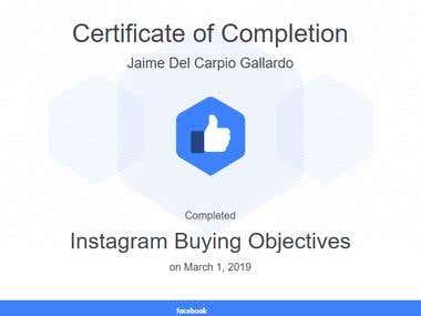 Instagram Buying Objetives