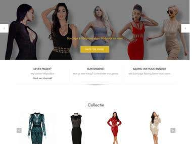 Website Development Online Store