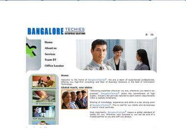 website for consultancy