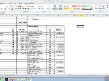 Make Expense and Revenue Report