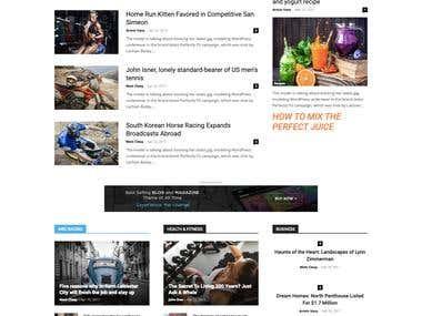 Wordpress Newspaper Website