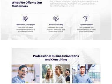 Wordpress Consulting Business Site