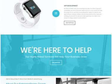 IT company portfolio