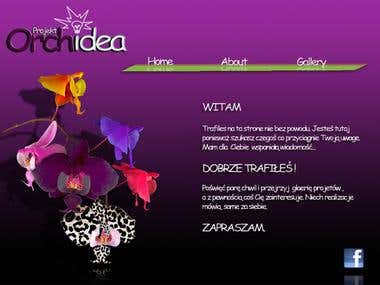 Web Homepage layout design