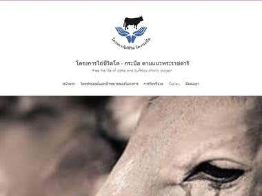Cattle Charity Landing Page