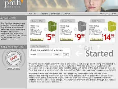 Website hosting and development company